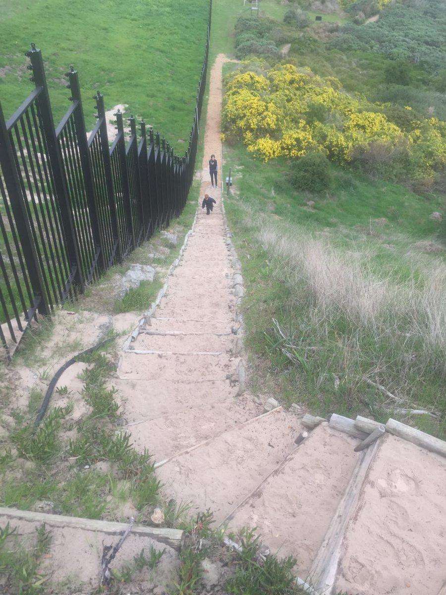 Trail-Running-7